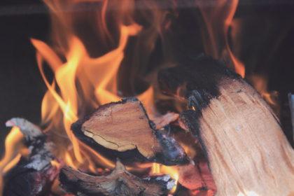 Il calore dal legno: caldaie, stufe e termocamini a biomasse legnose