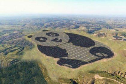 """Fotovoltaico a forma di panda, nuova e """"simpatica"""" installazione in Cina"""